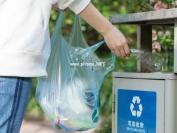 在上海学垃圾分类