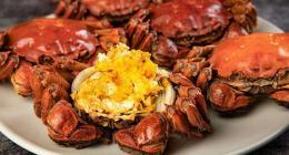 螃蟹壳属于什么垃圾 吃剩的螃蟹怎么垃圾分类?
