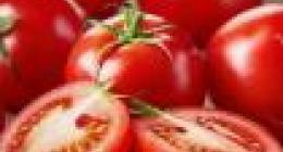 腐烂的西红柿是什么垃圾