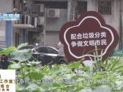 惠州:垃圾分类初见成效 六成以上住户能正确分类