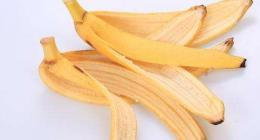 香蕉皮属于什么垃圾 吃剩的香蕉皮怎么处理?