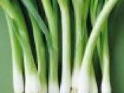 葱是属于什么垃圾?