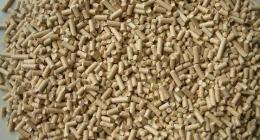 猫砂属于什么垃圾 用过的猫砂怎么进行垃圾分类