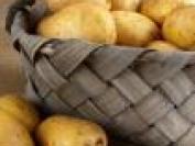 马铃薯(土豆)是属于什么垃圾?