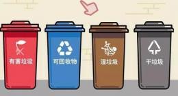 """垃圾分类""""上海实践""""一周年,""""新时尚""""如何改变长三角?"""